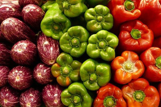 Fialové baklažány, zelené a červené papriky.jpg